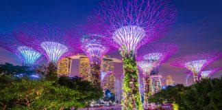 Địa điểm đi chơi về đêm ở Singapore